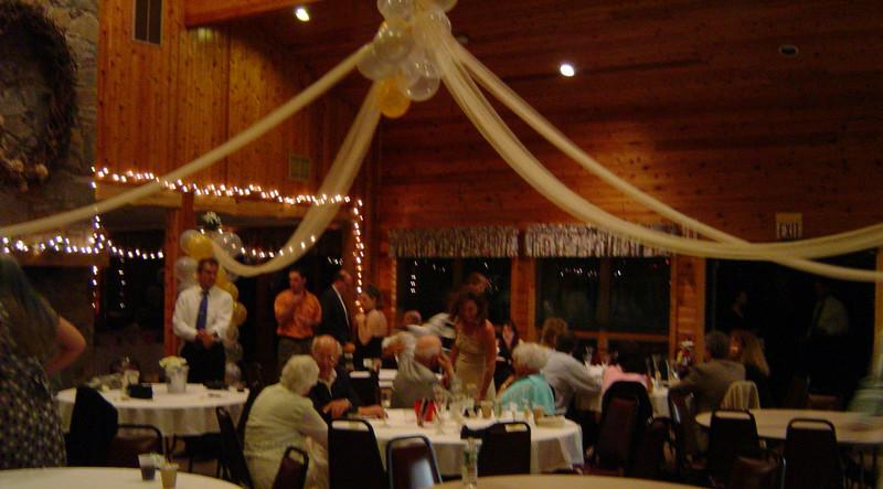 Silver and Gold WeddingNot really a Dance Canopy but a canopy over the
