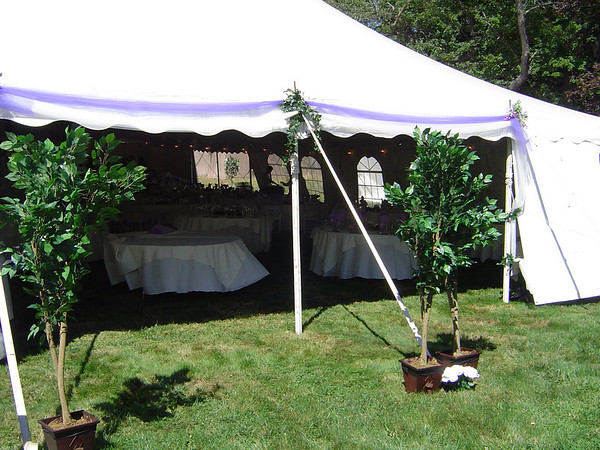Lavender Tent Wedding Tulle Decoration with Artificial Trees to Highlight
