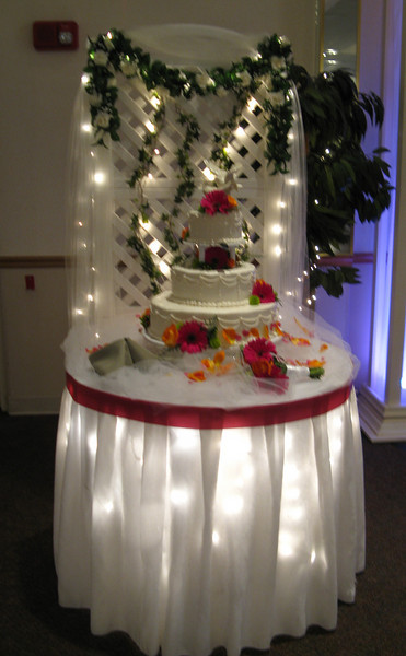 Cake Table Lights and greenery are behind the table